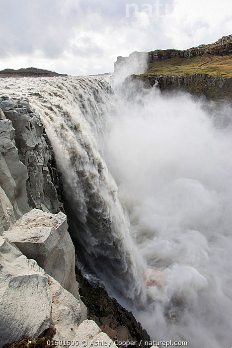 Dettifoss waterfall, the largest waterfall in Europe by volume. It is 100 metres wide and takes meltwater in the river Jokulsa a Fjollum from the Vatnajokull ice sheet. Iceland. September., Dettifoss,water,waterfall,meltwater,river,cliff,rock,geology,Iceland,Jokulsargljufur,national park,Jokulsa a Fjollum,white water,wild,drop,sediment,erosion,,,,, Ashley Cooper