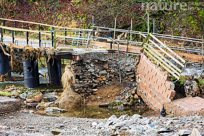 Low Bridge End Farm in St Johns in the Vale, near Keswick, Lake District, UK, with access bridge destroyed by the floods from Storm Desmond. England, UK, December 2015.  ,  Floods,flooding,flooded,Cumbria,Lake District,UK,weather,extreme weather,climate change,global warming,deluge,torrential rain,downpour,meteorology,low pressure,weather front,rain,raining,heavy rain,precipitation,flood waters,river,road,swept away,undermined,flood damage,road closed,power,bridge,collapsed,destruction,farm,farm house,St Johns in the Vale,Keswick,Storm Desmond,,,,  ,  Ashley Cooper
