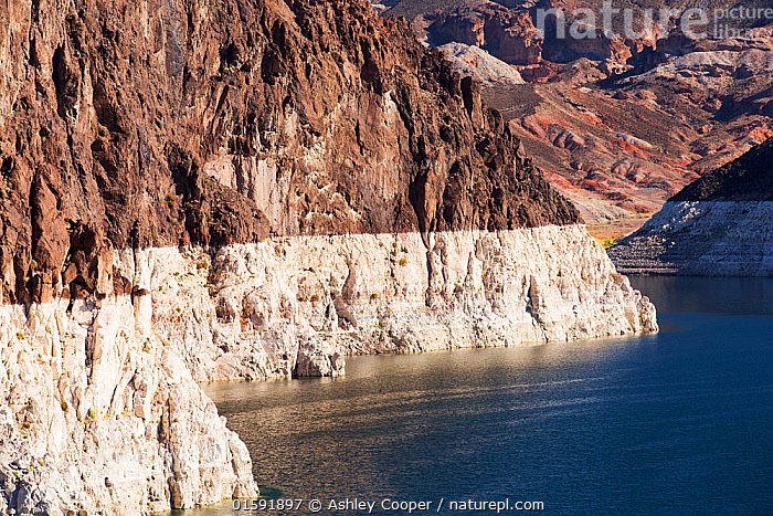 Lake Mead at a very low level due to the four year long drought. Lake Mead, Nevada, USA. September 2014.  ,  USA,US,America,Nevada,desert,Lake Mead,electricity,generating,renewable,renewable energy,carbon neutral,climate change,global warming,HEP,hydro,hydro power,drought,ravine,rock,geology,white,line,exposed,Hoover Dam,,,,,, catalogue11  ,  Ashley Cooper