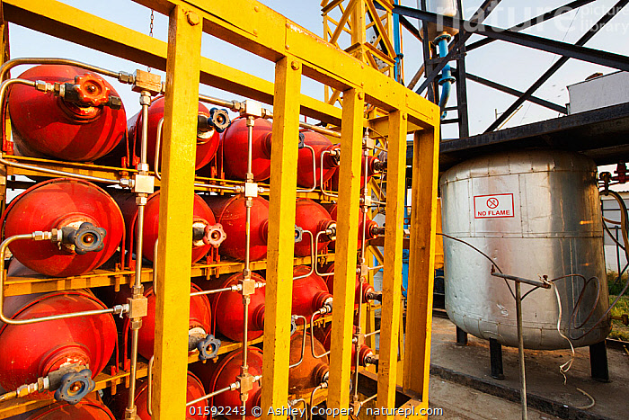 Ashram's bio-gas plant, that is fed with food waste and manure and fuels the kitchens and the Ashram's vehicles. Muni Seva Ashram,Goraj, near Vadodara, India,  ,  India,solar,solar power,solar panel,solar energy,climate change,global warming,carbon neutral,clean,green,renewable,renewable energy,progress,energy,power,empower,empowerment,solar cooker,solar thermal,solar cooking,dish,mirror,parabola,concentrate,sun,suns power,heating,hot,NGO,charity,technology,low impact,carbon footprint,carbon offset,efficient,home made,third world,rural,remote,campus,Indian,Asian,Asia,red,Ashram,ashram,compassion,Muni Seva,Muni Seva Ashram,biogas,gas,plant,biogas plant,anaerobic,anaerobic digestion,gas plant,food waste,manure,recylce,recycling,compressor,bottling,bottling plant,gas bottle,,,Asia,Indian Subcontinent,India,Environment,Environmental Issues,Power supply,Sustainable power,Energy,Biofuel,Bio fuel,  ,  Ashley Cooper