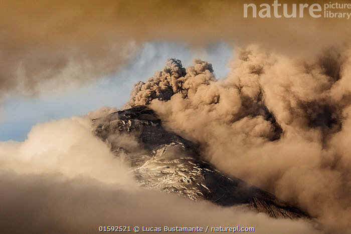 Plume of ash over the erupting Cotopaxi Volcano, Cotopaxi National Park, Cotopaxi, Ecuador, August 2015.  ,  Erupting,Latin America,South America,Ecuador,Mountain,Volcano,Sky,Cloud,Ash Cloud,Smoke,Landscape,Geology,Volcanic features,Cotapaxi National Park,,, catalogue11  ,  Lucas Bustamante