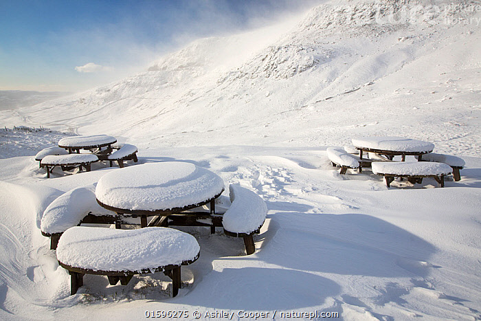 Picnic tables on the summit of Kirkstone Pass, plastered in fresh snow after overnight snow storms in the Lake District, Cumbria, UK.  January 2016  ,  hill,mountain,Lake District,Cumbria,UK,weather,winter,cold,snow,snow storm,white,National Park,meteorology,Kirkstone,Kirkstone Pass,ice,icy,picnic table,bench,,,Europe,Western Europe,UK,Snow,  ,  Ashley Cooper