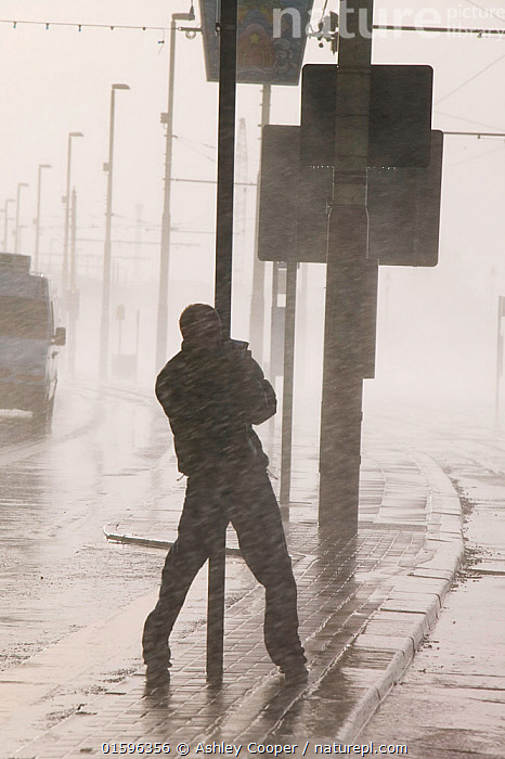 Man holding onto post during severe storm with hurricane force winds, Blackpool, England, UK, November 2007., weather,extreme,extreme weather,storm,storm surge,depression,hurricane,wind,windy,spray,sea spray,salt spray,sea,waves,crashing,power,promenade,road,engulfed,climate,global warming,energy,sea wall,coast,coastaldefences,breeched,powerful,nature,raw,awesome,violent,cost,economic cost,battered,battering,swamped,overcome,struggle,car,transport,disruption,disrupted,cling on,survive,sirvival,hold on,danger,dangerous,,,People,Europe,Western Europe,UK,Weather,Storm,Bad Weather,Severe weather,,, catalogue11, Ashley Cooper