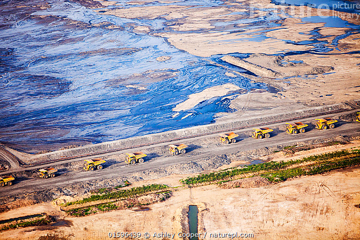Massive dump trucks with  load with tar sand in a mine north of Fort McMurray, Alberta, Canada. August 2012  ,  tar sand,tar sands,oil sand,oil sands,oil industry,fossil fuel,climate change,global warming,industry,heavy industry,industrial,Athabasca,Alberta,Canada,destruction,pollution,contamination,contaminated,strip mining,Fort McMurray,sky,environment,environmental destruction,carbon footprint,statement,affected,Boreal Forest,toxic,oil,bitumen,deposits,oil reserves,emissions,energy,aerial,aerial photograph,soil,overburden,oil slick,oil spill,dump truck,haulage,road,,,,  ,  Ashley Cooper
