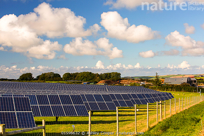 A farm based solar plant near wadebridge, Cornwall, UK,. August 2015, Wadebridge,Cornwall,UK,field,farm,sheep,grazing,green,eco,renewable,renewable energy,renewable power,power,energy,electricity,generating,solar,solar panel,PV,photo voltaic,carbon footprint,carbon neutral,climate change,global warming,FIT,feed in tariff,clean,South,South facing,sunlight,solar farm,,,Environment,Environmental Issues,Power supply,Sustainable power,Energy,Solar power,,, catalogue11, Ashley Cooper