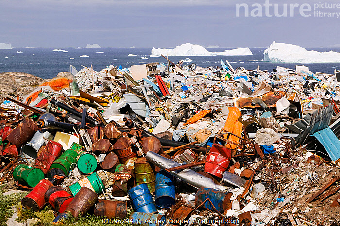 Rubbish dumped on the tundra outside Illulissat, Greenland with icebergs behind from the Sermeq Kujullaq or Illulissat Ice fjord, UNESCO World Heritage Site, Greenland. July 2008  ,  climate change,global warming,polluted,pollution,cantaminated,contamination,waste,abandoned,tip,tipping,refuse,trash,garbage,Greenland,Arctic,Illulissat,rubbish,rubbish dump,garbage dump,contrast,Unesco world heritage site,landscape,iceberg,coast,sea,arctic ocean,summer,Illulissat ice fjord,sermeq kujalleq,abuse,landfill,environment,environmental,metal,scrap metal,oil barrel,,,Waste,Environment,Environmental Issues,  ,  Ashley Cooper