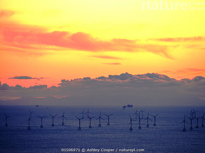 An Irish sea gas platform and wind turbines in the Irish sea from Black Coombe in the Lake district, Cumbria, UK. November 2012, Black Coombe,Cumbria,Lake district,UK,sea,Irish sea,coast,wind farm,offshore,offshore wind farm,offshore wind turbine,wind turbine,renewable energy,wind power,wind energy,electricity,power,energy,Walney,gas,gas platform,fossil fuel,contrast,gas field,gas extraction,,,,, Ashley Cooper
