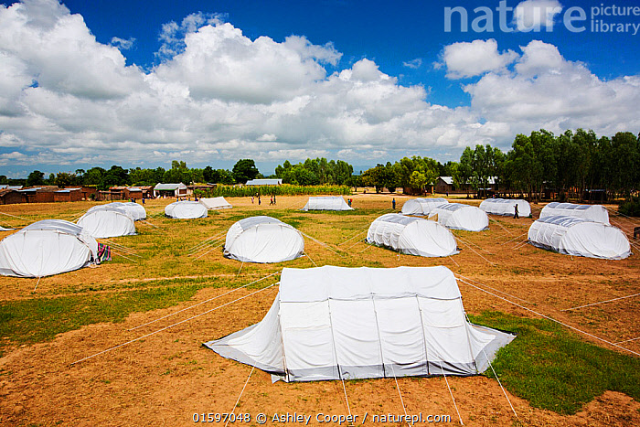 Refugee camp with white tents, set up for people displaced after the January 2015 floods, near Mulanje, Malawi, March 2015., Malawi,Africa,Chiteskesa,refugee camp,flood,floods,flooding,displaced,charity,NGO,aid,black,African,disaster,disaster relief,climate change,global warming,refugee,poor,poverty,man,tent,shelter,,,,, Ashley Cooper