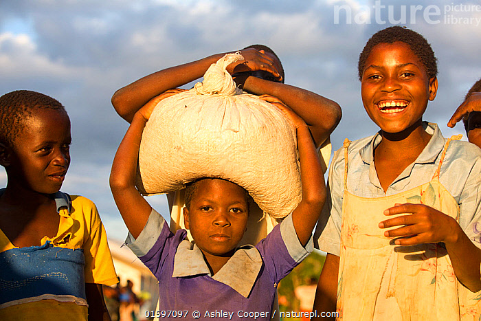 People displaced by flooding carrying food aid, Chiteskesa refugee camp, near Mulanje, Malawi, March 2015., Malawi,Africa,Chiteskesa,refugee camp,flood,floods,flooding,displaced,charity,NGO,aid,female,woman,black,African,green,dress,women,disaster,disaster relief,climate change,global warming,refugee,poor,poverty,mother,child,Unicef,World Food Program,sack,food,food supply,balance,carry,carrying,,,People,, Ashley Cooper