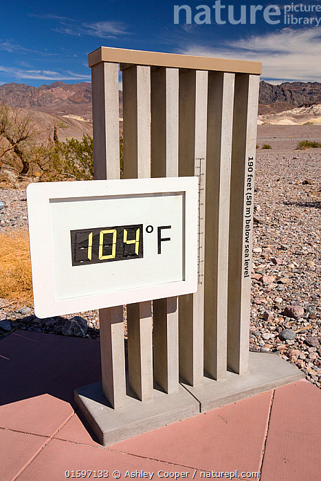 Nature Picture Library - Thermometer at the Furnace Creek