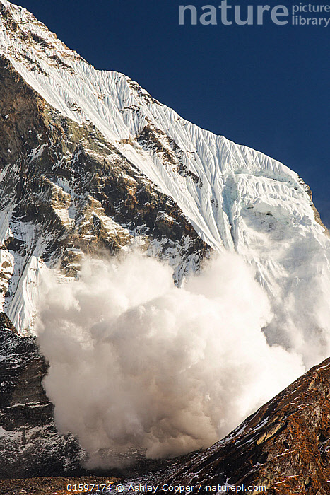 Avalanche on Machapuchare  / Fishtail Peak in the Annapurna Himalaya, Nepal. It was caused by a massive block of glacial ice detaching from the summit cliffs. 29th December 2012.  ,  Himalaya,Himalayas,Nepal,Annapurna,peak,mountain,mountains,summit,FishTail,Machapuchare,sacred,winter,avalanche,avalanching,danger,gravity,ice,ice cloud,snow,weather,avalanche risk,glacier,glacial,glacial retreat,climate change,global warming,Annapurna Sanctuary,rock,cliff,steep,ravine,gully,cliff face,Shiva,religion,holy,engulf,nature,power,powerful,,,Landscape,,, catalogue11  ,  Ashley Cooper