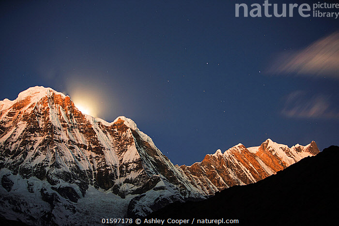 Night sky over Annapurna South and Annapurna Fang, with a glow from the moon setting behind the peak. Annapurna Sanctuary, Himalayas, Nepal, December 2012.  ,  Himalaya,Himalayas,Nepal,Annapurna,peak,mountain,mountains,summit,winter,ice,snow,glacier,glacial,Annapurna Sanctuary,rock,cliff,sky,night,night sky,dark,star,stars,Annapurna South,Annapurna Fang,moon,glow,glowing,,,Landscape,,, catalogue11  ,  Ashley Cooper