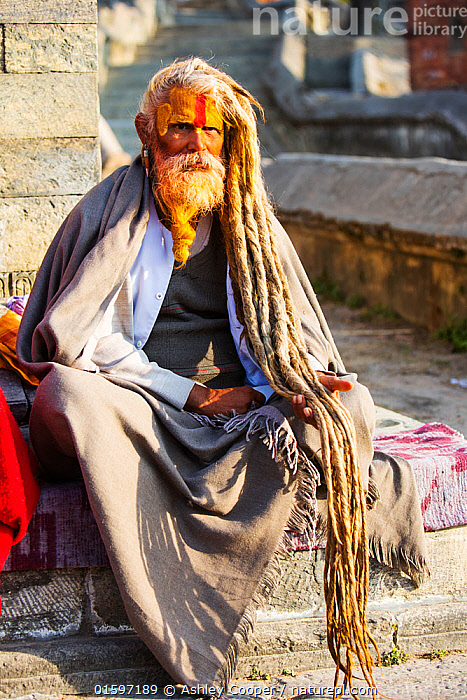 Sadhu or Hindu holy man in Kathmandu, Nepal. Sadhus are men who have renounced all material attachments to concentrate on their spirituality. January 2013.  ,  Himalaya,Nepal,Kathmandu,man,male,old,beard,face,head,faith,religion,Sadhu,sadu,holy man,ascetic,yogi,Hindu,Hinduism,decoration,contemplation,brahman,ochre,sanyasa,renunciation,yellow,orange,colour,clothes,clothing,face paint,makeup,hair,dreadlocks,,,People,  ,  Ashley Cooper