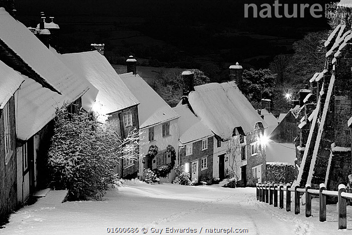 Gold Hill in winter, Shaftesbury, Dorset, England, UK. January 2010.  ,  Dark,Sloping,Steep,Christmas,Europe,Western Europe,UK,Great Britain,England,Dorset,Monochromatic,Road,Building,Residential Structure,House,Houses,Cottage,Roof,Roofs,Rooftop,Rooftops,Thatched Roof,Thatch,Thatched,Thatched Roofs,Thatches,Chimney,Chimneys,Hill,Snow,Landscape,Winter,Night,,, catalogue11  ,  Guy Edwardes