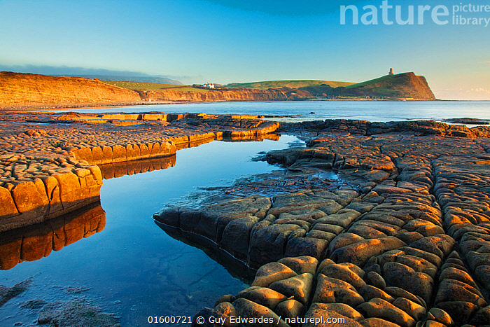 Rock formations at Kimmeridge Bay, Clavell Tower in background, Isle of Purbeck, Jurassic Coast, Dorset, England, UK. December 2010.  ,  Europe,Western Europe,UK,Great Britain,England,Dorset,Building,Tower,Towers,Cliff,Peninsula,Promontory,Reflection,Rock,Ocean,English Channel,The English Channel,Atlantic Ocean,Tide Pool,Rock Pool,Rock Pools,Tidal Pool,Tidal Pools,Tide Pools,Landscape,Twilight,Evening,Coast,Marine,Tidepool,Coastal,Water,Geology,Saltwater,Sea,Intertidal,Littoral,Dusk,Jurassic Coast,UNESCO World Heritage Site,Rocky,Kimmeridge,Isle of Purbeck,Kimmeridge Bay,  ,  Guy Edwardes