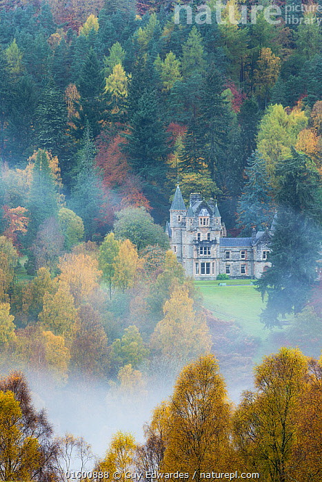 Bonskeid House, traditional Scottish country house, Linn of Tummel, Pitlochry, Perthshire, Scotland, UK. October 2013., Europe,Western Europe,UK,Great Britain,Scotland,Highland,Plant,Tree,Building,Residential Structure,House,Houses,Mansion,Country House,Country Houses,Estate,Estates,Manor,Manor House,Manor Houses,Manors,Mansions,Stately Home,Mist,Landscape,Autumn,Woodland,Broadleaf woodland,Forest,Deciduous,Highlands of Scotland,Perthshire,, Guy Edwardes
