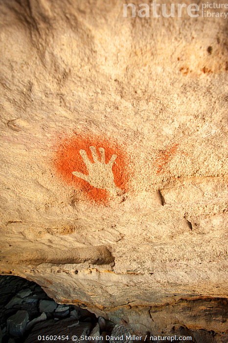 19,000 year-old Aboriginal rock painting of a hand on sandstone, Cania Gorge National Park, Queensland, Australia. September 2016., Old,Australasia,Australia,Queensland,Art,Cave Painting,Cave Paintings,Culture,Indigenous Culture,Reserve,Cave art,Rock art,Protected area,National Park,Tribes,Rock Painting,, Steven David Miller