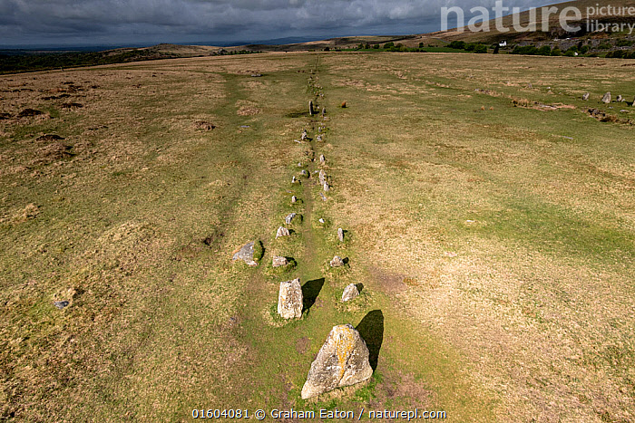 Merrivale stone rows, a line of upright, parallel megalithic standing stones, Devon, England, UK, May.  ,  Europe,Western Europe,UK,Great Britain,England,Devon,Monument,Monuments,Megalithic Monument,Megalithic Monuments,Standing Stone,Standing Stones,Rock Formations,History,Geology,Prehistoric,The Past,Landform,  ,  Graham Eaton