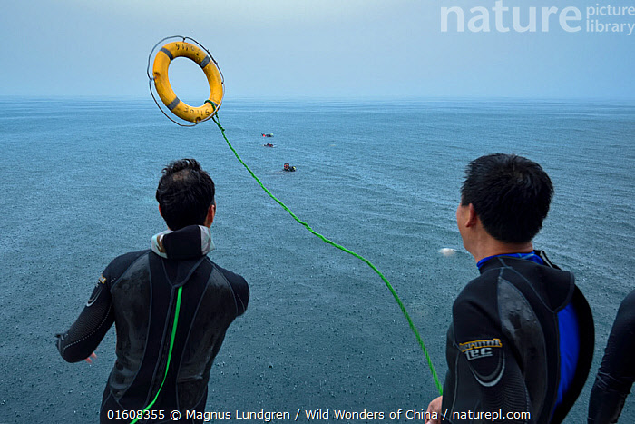 People on boat throwing out life rings to divers in strong currents, Po Bin Chau, Sai Kung archipelago, Hong Kong, China. June, 2016., Diving,Underwater Diving,Asia,East Asia,China,Hong Kong,Equipment,Safety Equipment,Life Preserver,Life Preservers,Life Ring,Life Rings,Life-Belt,Life-Belts,Lifebelts,Lifebuoy,Lifebuoys,, Magnus Lundgren / Wild Wonders of China