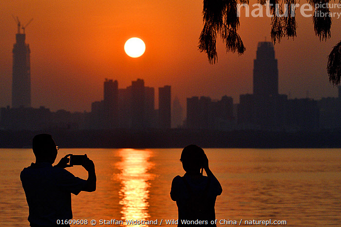 Two people taking a picture of the sunset skyline of Wuhan, East Lake Greenway park, Wuhan, Hubei, China. June 2018  ,  Capturing An Image,Photographing,People,Woman,Man,Asia,East Asia,China,Photography,Back Lit,City,Skyline,Skylines,Building,Skyscraper,Skyscrapers,Reflection,Cityscape,Water,Silhouette,The Sun,  ,  Staffan Widstrand / Wild Wonders of China