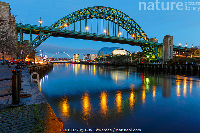 The Tyne Bridge illuminated at dusk, River Tyne, Newcastle, Tyne and Wear, England, UK, December 2012., Bridge,Dusk,England,Gateshead,Guy Edwardes,Horizontal,Illuminated,Newcastle upon Tyne,Night,Reflection,River Tyne,Tyne & Wear,Tyne Bridge,UK,cityscape,,,Artifical light,Electric Light,Bridge,Bridges,Reflection,Flowing Water,River,Landscape,Freshwater,Water,, Guy Edwardes