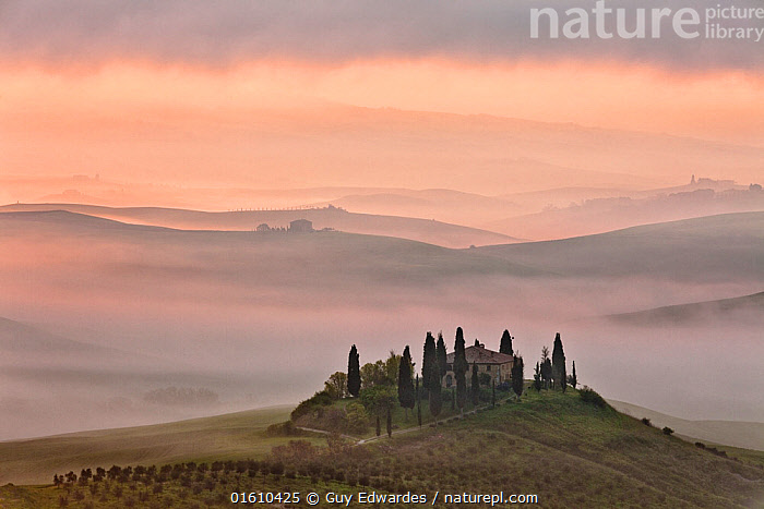 View over The Belvedere at dawn, San Quirico d'Orcia,. April 2010  ,  Belvedere,Dawn,Guy Edwardes,Horizontal,Italy,Landscape,Mist,Pienza,Scenic,Sunrise,Tuscan,Tuscany,Val D&#39,Orcia,countryside,farmhouse,misty morning,rolling hills,,,Europe,Southern Europe,Italy,Tuscany,Tuscanny,Plant,Tree,Olive Tree,Olive Trees,Building,Residential Structure,House,Houses,Farmhouse,Farmhouses,Agricultural Land,Cultivated Land,Mist,Landscape,Countryside,Farmland,Dawn,  ,  Guy Edwardes