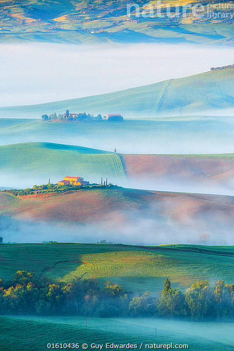 Dawn with fog over farmland, Pienza, Tuscany, May 2014.  ,  Arable,Dawn,Europe,Farmland,Fields,Fog,Guy Edwardes,Italy,Landscape,Layers,Mist,Morning,Pienza,Tuscan,Tuscany,Val D&#39,Orcia,Vertical,countryside,farm,rolling hills,,,Europe,Southern Europe,Italy,Tuscany,Tuscanny,Building,Residential Structure,House,Houses,Farmhouse,Farmhouses,Agricultural Land,Cultivated Land,Mist,Landscape,Beautiful,Countryside,Farmland,Dawn,  ,  Guy Edwardes
