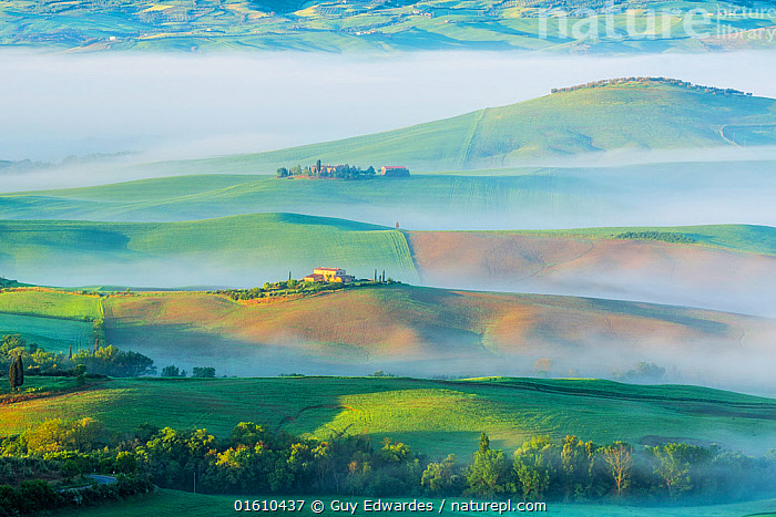 Dawn with fog over farmland, Pienza, Tuscany, May 2014., Arable,Dawn,Europe,Farmland,Fields,Fog,Guy Edwardes,Horizontal,Italy,Landscape,Layers,Mist,Morning,Pienza,Tuscan,Tuscany,Val D&#39,Orcia,countryside,farm,rolling hills,,,Europe,Southern Europe,Italy,Tuscany,Tuscanny,Building,Residential Structure,House,Houses,Farmhouse,Farmhouses,Agricultural Land,Cultivated Land,Mist,Landscape,Beautiful,Countryside,Farmland,Dawn,, Guy Edwardes