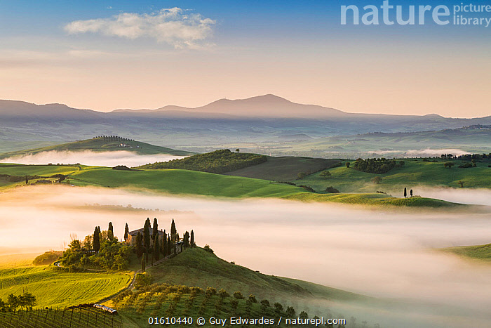 Dawn with fog over farmland, Pienza, Tuscany, May 2014.  ,  Belvedere,Dawn,Europe,Farmland,Fields,Fog,Guy Edwardes,Horizontal,Italy,Landscape,Layers,Mist,Monte Amiata,Morning,Pienza,San Quirico D&#39,Orcia,Tuscan,Tuscany,Val D&#39,Orcia,countryside,farm,rolling hills,,,Europe,Southern Europe,Italy,Tuscany,Tuscanny,Building,Residential Structure,House,Houses,Farmhouse,Farmhouses,Agricultural Land,Cultivated Land,Mist,Landscape,Beautiful,Countryside,Farmland,Dawn,  ,  Guy Edwardes