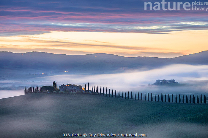 Farmhouse and cypress trees, Bagno Vignoni, Val d'Orcia, Tuscany, Italy, May 2018.  ,  Avenue,Bagno Vignoni,Dawn,Fog,Guy Edwardes,Italy,Landscape,Mist,Sunrise,Tuscany,Val D&#39,Orcia,cypress trees,farmhouse,,,Europe,Southern Europe,Italy,Tuscany,Tuscanny,Building,Residential Structure,House,Houses,Farmhouse,Farmhouses,Agricultural Land,Cultivated Land,Mist,Landscape,Beautiful,Countryside,Farmland,Dawn,  ,  Guy Edwardes