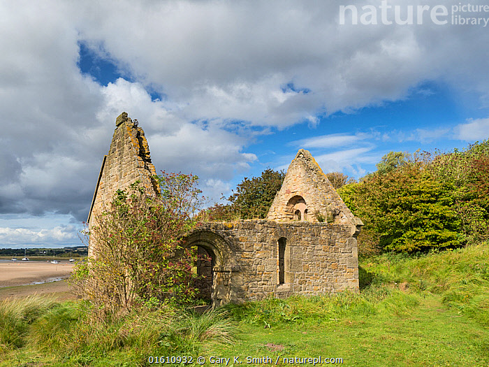 Mortuary Chapel, Church Hill, Alnmouth, Northumberland, England, UK. September 2017., Europe,Western Europe,UK,Great Britain,England,Northumberland,Ruins,Ruin,Landscape,History,The Past,, Gary  K. Smith