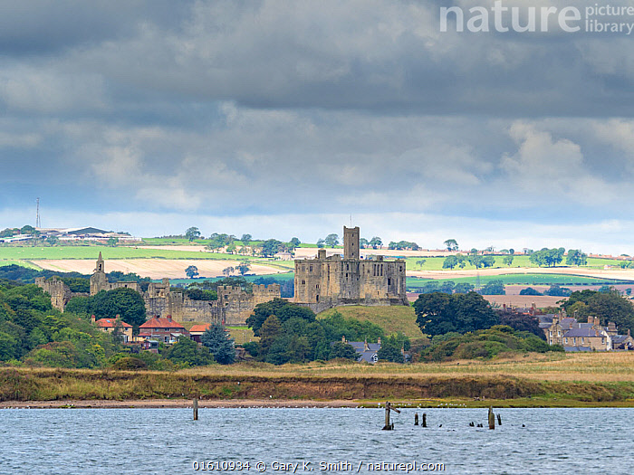 Warkworth castle. Northumberland, England, UK, September 2017., Europe,Western Europe,UK,Great Britain,England,Northumberland,Building,Historic Building,Castle,Castles,Landscape,Coast,Coastal,, Gary  K. Smith