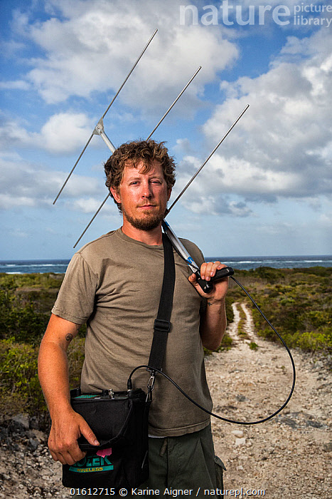 Portrait of scientist Nathan Cooper holding radio-telemetry equipment to track Kirtland's warbler (Setophaga kirtlandii). Cat Island, Bahamas. April 2017., warbler,Audubon,Cat Island,Bahamas,wintering grounds,,,Migration,People,European Descent,Caucasian Ethnicity,Man,Scientist,Scientists,Research,Researching,The Caribbean,Caribbean,West Indies,Portrait,Animal,Equipment,Navigational Equipment,Navigation,Navigation Equipment,GPS,Science,Animal Behaviour,Behaviour,Biodiversity hotspots,Conservation equipment,Radio trackers,Tracking,Behavioural,, Karine Aigner