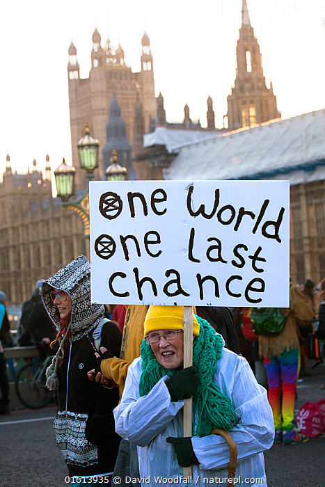 Woman holding 'One World One Last Chance' placard during Extinction Rebellion demonstration to draw attention to climate change. Five bridges across the Thames were blocked. Houses of Parliament, Westminster, London, England, UK. November 2018.  ,  People,Adult,Adults,Senior Adult,Woman,Protestor,Demonstrater,Demonstraters,Demonstrator,Demonstrators,Protester,Protesters,Protestors,Environmental Protestor,Environment Protester,Environment Protesters,Environmental Protestors,Environmentalist,Environmentalists,Campaign,Campaigning,Protests,Rally,Rallies,Europe,Western Europe,UK,Great Britain,England,London,Greater London,Inner London,Westminster,Information,Banner,Banners,Placards,Building,Government Building,Legislative Building,Parliament Building,Parliament Buildings,Palace Of Westminster,Houses Of Parliament,The Houses Of Parliament,The Palace Of Westminster,Environment,Environmental Issues,Global Warming,Greenhouse Effect,Direct action,Climate change,Demonstration,Demonstrations,  ,  David  Woodfall