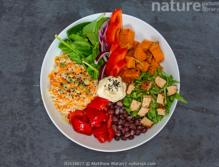 Bowl of food with seeds, spinach, rocket, humous, tomatoes, squash., Colour,Colourful,Food,Vegetable,Vegetables,Meal,Meals,Healthy,Health,Wellness,Well,Vegetarian,Vegan,, Matthew Maran