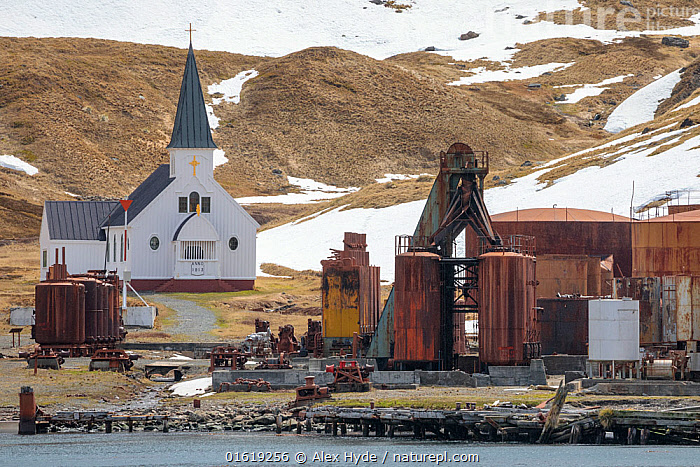 Grytviken was the largest whaling station on South Georgia. It was made made famous by Shackleton's reunion with civilization on South Georgia after losing his ship, the Endurance, to Antarctic pack ice in 1915. Grytviken, South Georgia. November.  ,  Abandoned,Building,Church,Churches,Ruins,Ruin,Environment,Environmental Issues,Coast,Coastal,Whale hunting,Subantarctic islands,South Georgia Island,  ,  Alex  Hyde