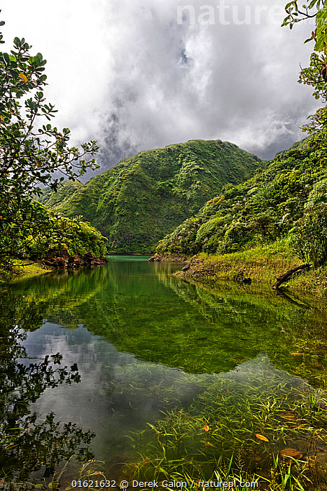 High altitude Boeri Lake in old volcano crater, Morne Trois Pitons National Park, Dominica, West Indies, Windward Islands.  ,  The Caribbean,Caribbean,West Indies,Volcano,Sky,Cloud,Landscape,Reserve,Geology,Volcanic features,Biodiversity hotspots,Protected area,National Park,Dominica,,,catalogue12  ,  Derek Galon