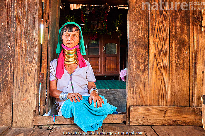 Kayan Lahwi woman with brass neck coils and traditional clothing sitting next to the front door of her home. In the background stands a buddhist altar. The Long Neck Kayan (also called Padaung in Burmese) are a sub-group of the Karen ethnic people from Burma. They are both animists and boudhists. Women wear spiral coils around their neck and lower legs.They are also nicknamed 'giraffe women'. Pan Pet Region, Kayah State, Myanmar. April 2019.  ,  People,Woman,Traditional,Asia,South East Asia,Burma,Myanmar,Jewelry,Jewellery,Jewellry,Culture,Indigenous Culture,Tribes,Interesting,Local people,Body modification,  ,  Eric Baccega