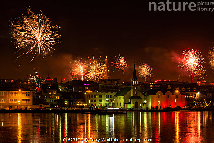 RF - New Years Eve fireworks celebration in Reykjavik, Iceland with lights reflected in the water (This image may be licensed either as rights managed or royalty free.), Europe,Northern Europe,North Europe,Nordic Countries,Scandinavia,Iceland,Fireworks,Firework,Settlement,City,Town,Towns,Building,Reflection,Night,Coast,Coastal,Buildings,Coasts,NightsRF,Royalty free,RF4,, Terry  Whittaker