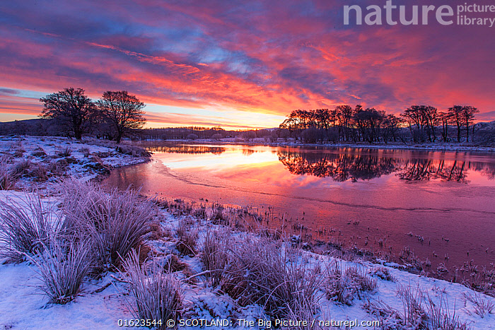 River Spey on winter's dawn, Cairngorms National Park, Scotland, UK.January  ,  Europe,Western Europe,UK,Great Britain,Scotland,Highland,Landscape,Highlands of Scotland,Cairngorms,Cairngorms National Park,SCOTLAND: The Big Picture,Mark Hamblin,,catalogue12  ,  SCOTLAND: The Big Picture