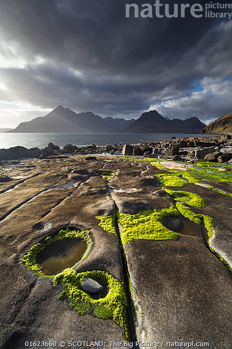 Rocky shoreline, Loch Scavaig and view to Cuillin mountians, Isle of Skye, Scotland, UK, April.  ,  Europe,Western Europe,UK,Great Britain,Scotland,Hebrides,Inner Hebrides,Skye,Scottish islands,Scottish isles,Isle of Skye,SCOTLAND: The Big Picture,Mark Hamblin,,catalogue12  ,  SCOTLAND: The Big Picture