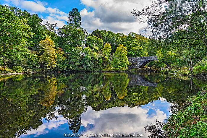 Beaver Bridge over River Conwy, near Betws-y-Coed, Snowdonia National Park, North Wales, UK, September 2018, Europe,Western Europe,UK,Great Britain,Wales,Plant,Tree,Reflection,Sky,Cloud,Flowing Water,River,Landscape,Freshwater,Water,Snowdonia National Park,Snowdonia NP,, Alan  Williams