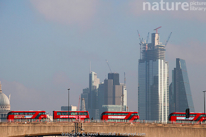 London buses at standstill on bridge during Extinction Rebellion climate change demonstration when five main bridges across River Thames were blocked by protestors.17 November 2019., Disorder,Campaign,Campaigning,Protests,Rally,Rallies,Europe,Western Europe,UK,Great Britain,England,London,Greater London,Inner London,Westminster,Copy Space,Skyline,Skylines,Environment,Environmental Issues,Global Warming,Greenhouse Effect,Rush Hour,Peak Hour,The Rush Hour,Traffic Congestion,Direct action,Climate change,Demonstration,Demonstrations,Negative space,, David  Woodfall
