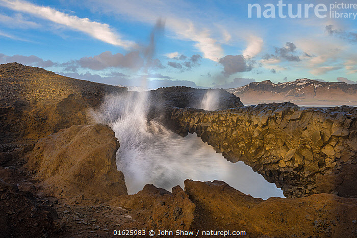 Spray shoots up from a blow hole on the Dyrholaey Peninsula, near Vik, Iceland, March., Europe,Northern Europe,North Europe,Nordic Countries,Scandinavia,Iceland,Animal,Blowhole,Blowholes,, John Shaw