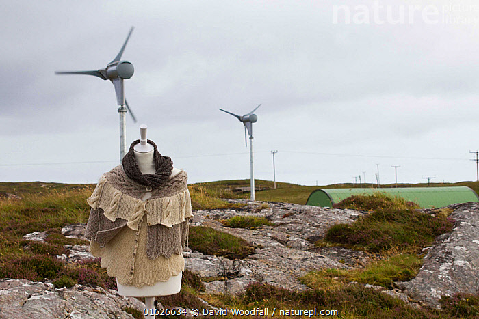 Manequin with knitwear made from sheep on machair with sustainable power wind turbines powering production of wool from machair grazing sheep. North Uist, Outer Hebrides. Scotland, UK, July 2016.  ,  Animal,Wildlife,Vertebrate,Bird,Birds,Tern,Little tern,Animalia,Animal,Wildlife,Vertebrate,Aves,Bird,Birds,Charadriiformes,Sternidae,Tern,Gull,Seabird,Sterninae,Sternula,Sternula albifrons,Little tern,Sterna albifrons,Traditional,Europe,Western Europe,UK,Great Britain,Scotland,Outer Hebrides,Infrastructure,Energy Infrastructure,Energy Infrastructures,Wind Farm,Wind Farms,Wool,Hebrides,Scottish islands,Scottish isles,Machair,  ,  David  Woodfall