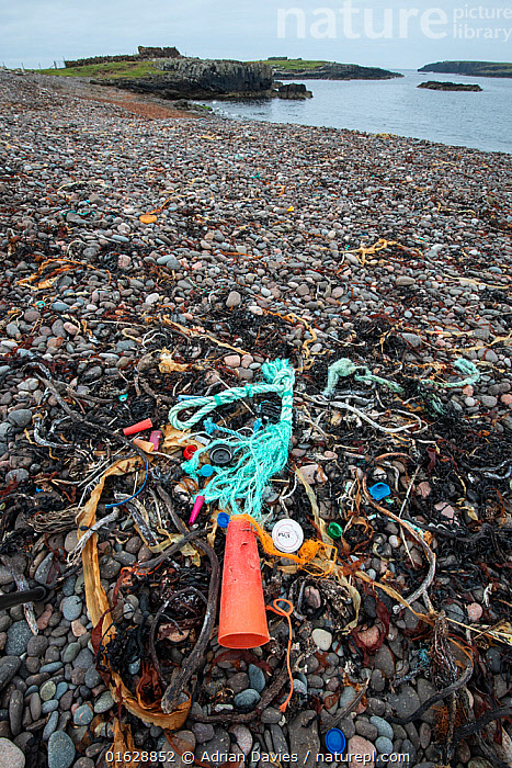 Discarded plastic and nylon rubbish on remote shingle beach. Shetland, Scotland, UK. July 2018., Waste,Europe,Western Europe,UK,Great Britain,Scotland,Shetland,Man Made Material,Plastic,Plastics,Rock,Landscape,Environment,Environmental Issues,Environmental Damage,Coast,Coastal,Littering,Non-biodegradable,Shingle,, Adrian Davies