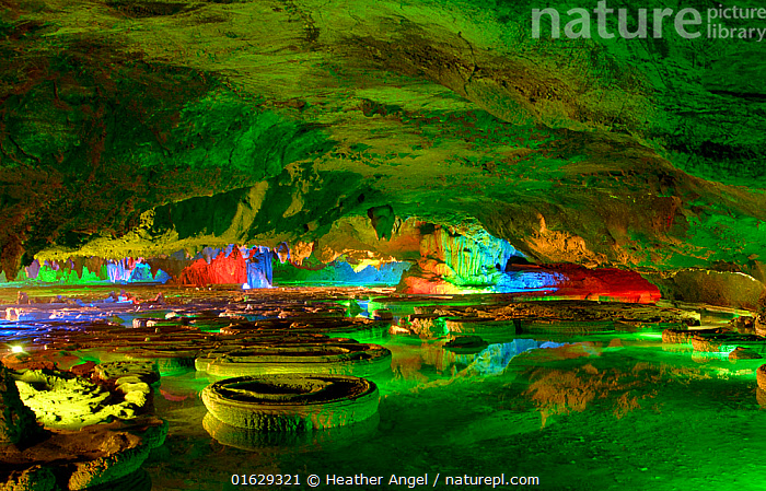 Green Lotus Cave, 108 basins resembling Lotus leaves are present. Bai Shan Di Village, Xingping, Guangxi Province, China. 2007., Asia,East Asia,China,Guangxi,Artifical light,Cave,Reflection,Landscape,Freshwater,Water,Pool,Xingping,Shan Di Village,Shan Di,, Heather Angel
