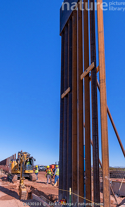 Mexican / United States border in Arizona, where the newer taller sections of the border wall pushed by President Trump are being erected in the environmentally sensitive Organ Pipe National Monument. Arizona, USA. August 2019.  ,  American,North America,USA,Western USA,Southwest USA,Arizona,Geographical Border,National Border,Wall,Politics,American,United States of America,,,catalogue12  ,  Jack Dykinga