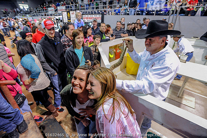 Tourists pose with live rattlesnake, annual Rattlesnake Roundup, Sweetwater, Texas, USA., Animal,Wildlife,Vertebrate,Reptile,Squamate,Viper,Rattlesnake,American,Horrific,Animalia,Animal,Wildlife,Vertebrate,Reptilia,Reptile,Squamata,Squamate,Viperidae,Viper,Viperid snakes,Snake,Crotalus,Rattlesnake,Rattler,Pitviper,Pit viper,People,Tourist,Tourists,Cruelty,Gruesome,North America,USA,Southern USA,Texas,Animal Cruelty,Event,American,United States of America,Horrific,Venomous, Jo-Anne McArthur / We Animals