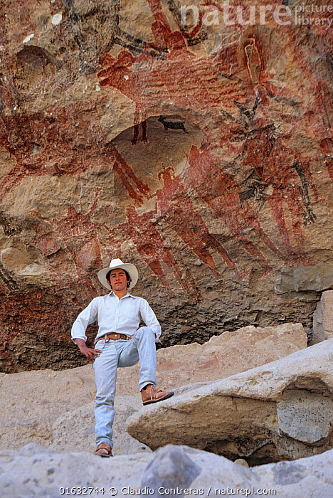 Guide in front of prehistoric rock paintings of Bighron sheep and people. La Pintada cave, San Francisco Sierra, El Vizcaino Biosphere Reserve, Baja California Peninsula, Mexico., Standing,People,Man,Guide,Guides,Animal Likeness,Latin America,Central America,Mexico,Low Angle View,Art,Cave Painting,Cave Paintings,Rock,History,Travel,Tourism,Reserve,Cave art,Rock art,Protected area,Prehistoric,The Past,Human likeness,Baja California Peninsula,UNESCO Biosphere Reserve,El Vizcaino Biosphere Reserve,, Claudio  Contreras